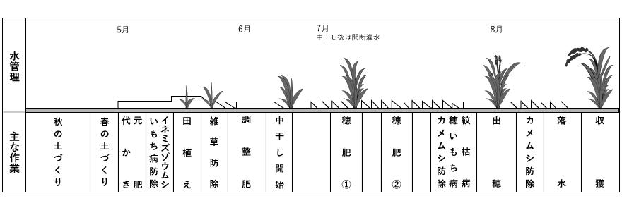 お米の営農情報