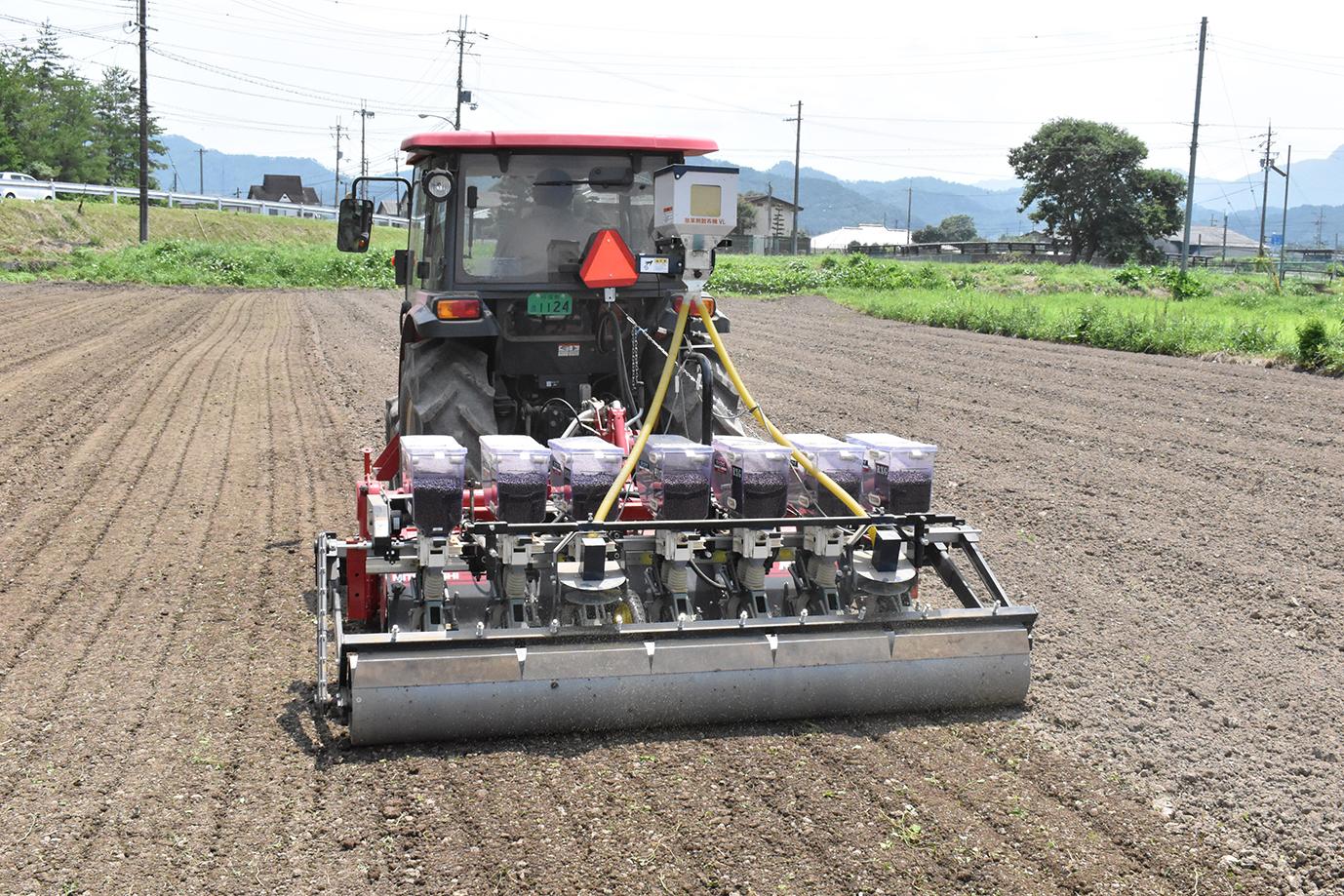 丹波大納言小豆の播種作業